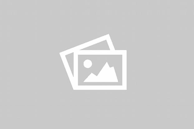 Channadal / கடலை பருப்பு